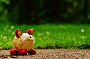 積み立て保険は資産だよ!!|積立保険の支払額を資産計上してみよう